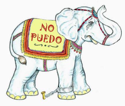 Yo soy asi el elefante encadenado jorge bucay for El elefante encadenado