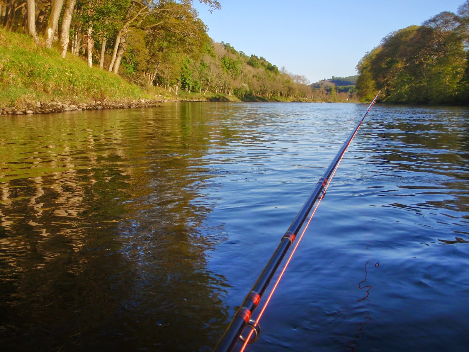 Salmon fly newtyle salmon fishing beat on the river tay for Salmon fishing colorado