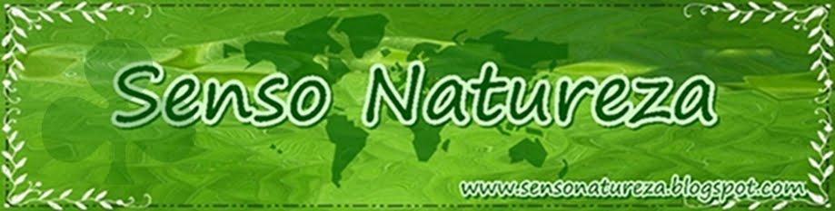 Senso Natureza