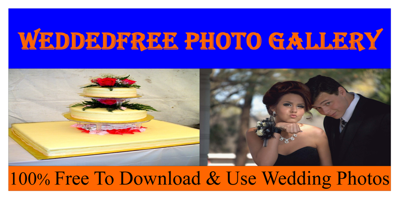 Weddedfree Photo Gallery
