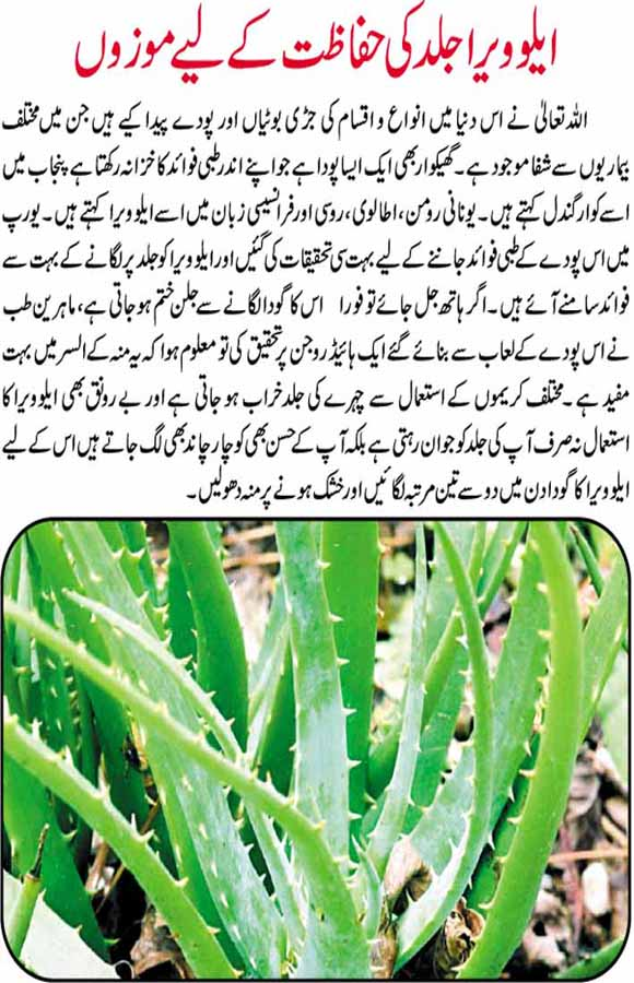 normal skin care tips in urdu