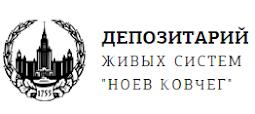 Проект МГУ