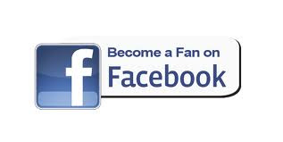 Like Tedco Toys on Facebook
