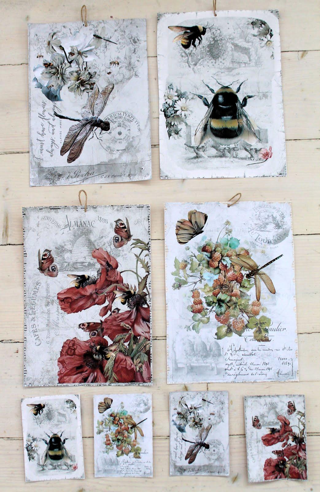 Flora insekter