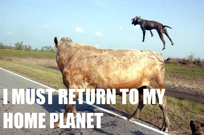 I Must Return To My Home Planet - My People Need Me