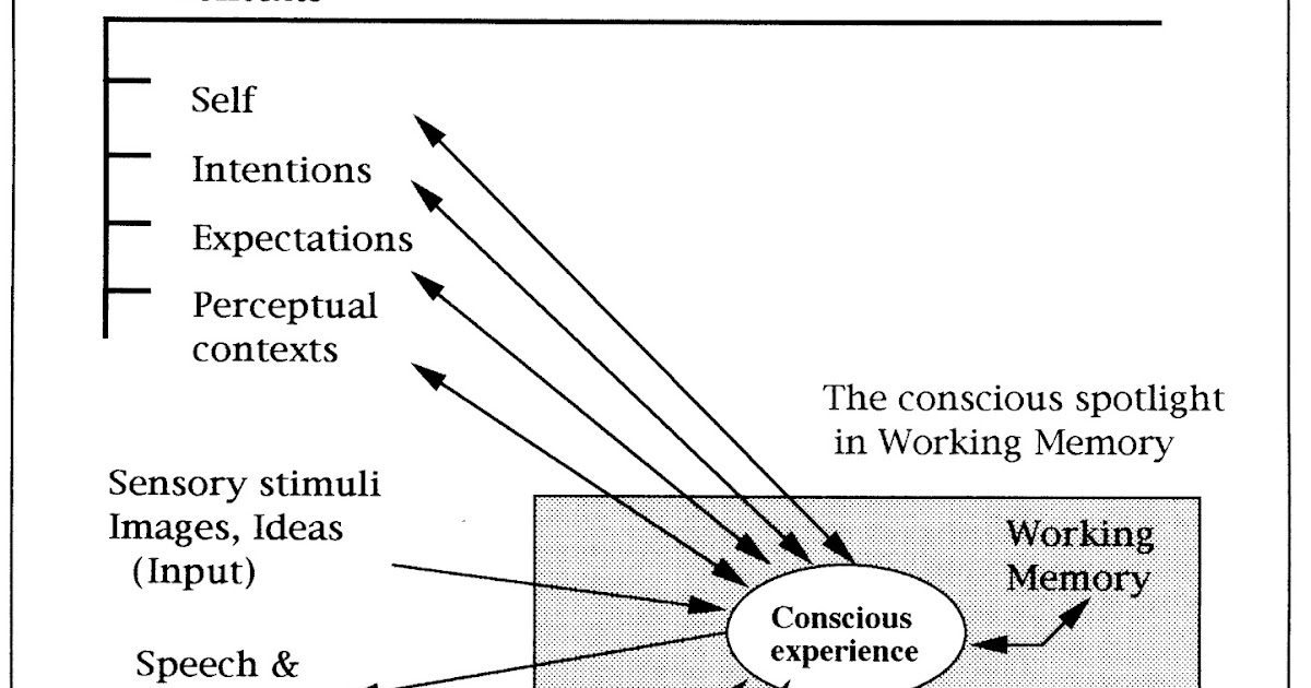 integral options cafe  global workspace theory and the future evolution of consciousness  part three