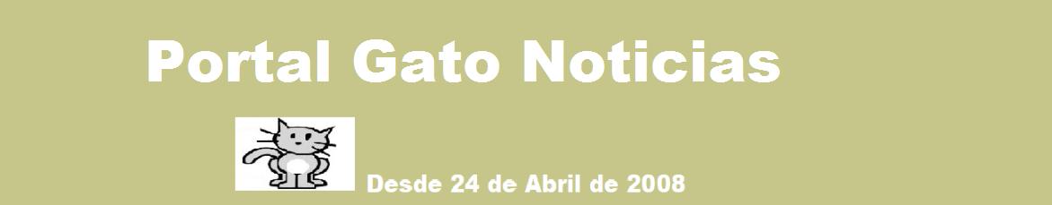 Portal Gato Noticias