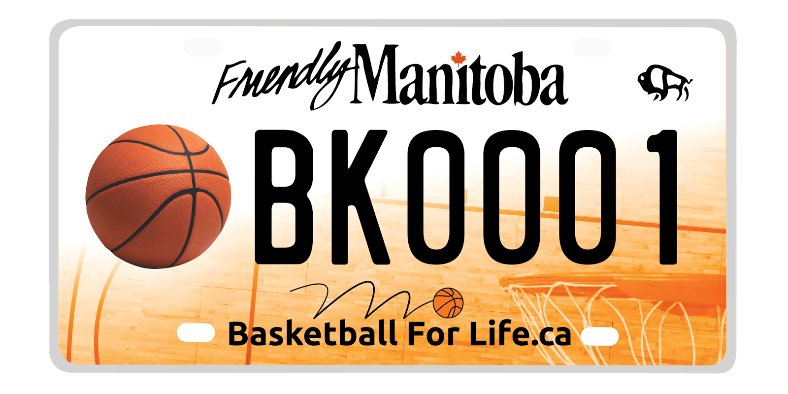 Basketball Licence Plate