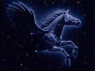 constelacion pegaso