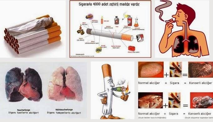 sigara markaları 2014, sigara zamları 2014, sigara alerjisi, sigara zayıflatır mı, sigara ekşi, acı, sigara uyuşturucu ve alkolün zararları, ucuz sigara, kaçak sigara, sigara zula, sigaradan kurtulmak, korunma yolları