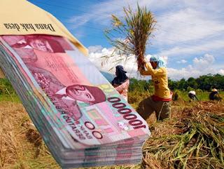 Dana ADD Diduga Kerap Terjadi Menyimpang Dan Pungli