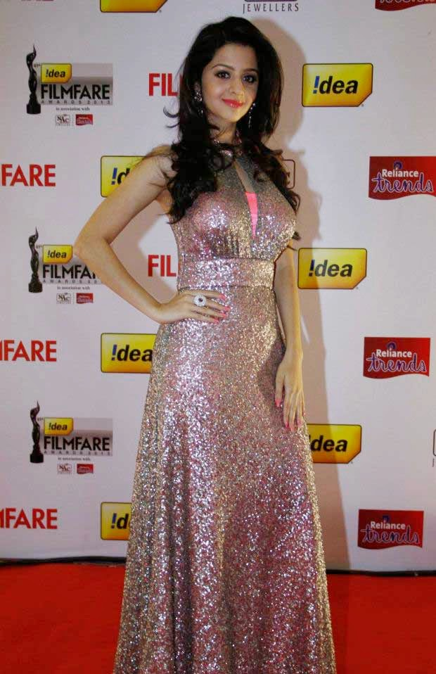 Celebs at 61st Idea Filmfare Awards 2013 (South)