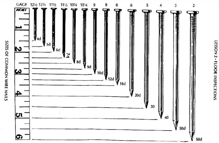Image Gallery Nail Diameters