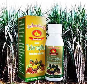 ฮอร์โมนพืชเข้มข้น ไม้อายุยืน