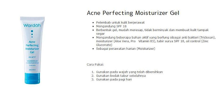 Acne Perfecting Moisturizer - $15