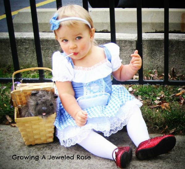 Dorothy toddler Halloween costume