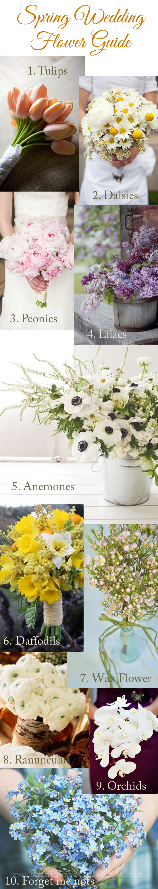 Spring Wedding Flower Guide