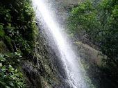 Cascada en el Chocoyero