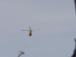 pájaro helicóptero 112 Aragón