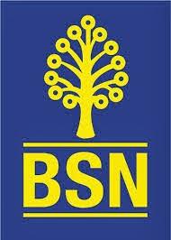 Jawatan Kosong Bank Simpanan Nasional BSN 23 March 2014