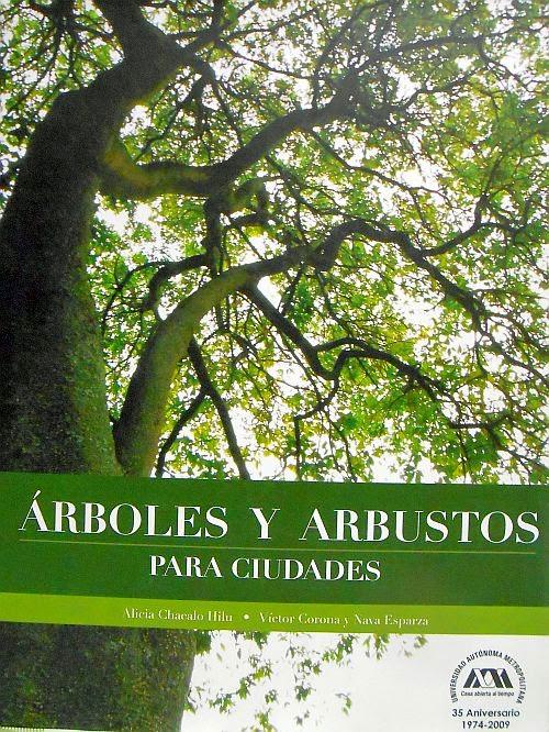 El cuexcomate los ignorados rboles y arbustos para ciudades for Jardines con arboles y arbustos