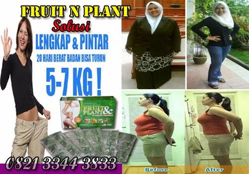 Fruit N Plant Adalah Obat Pelangsing Badan Herbal Yang Aman Untuk Menurunkan Berat Badan Dengan Cepat.