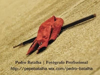 Pedro Batalha