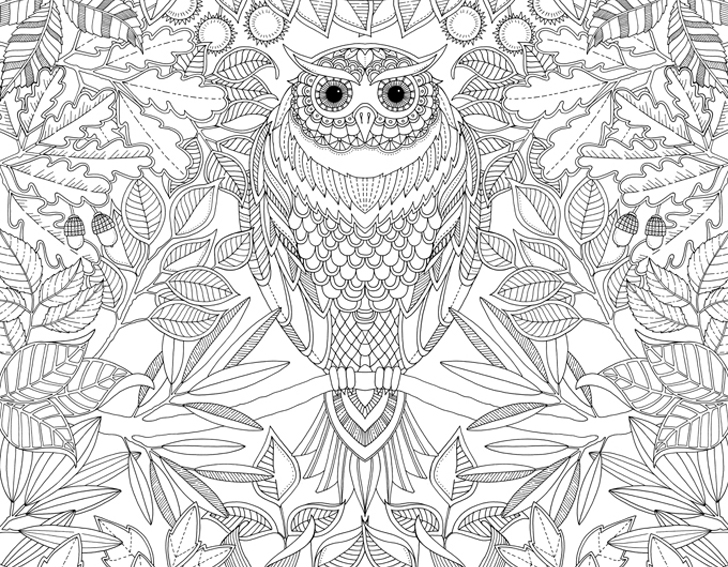 elaborate fairy coloring pages - photo#19