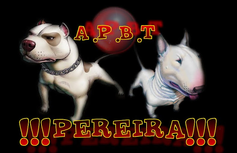datos personales aptp american pitbull terrier pereira pereira    American Pitbull Logo