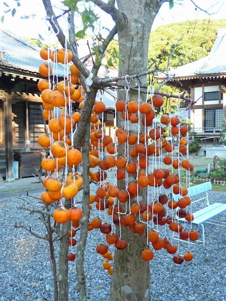23_Dried Kaki  'Hoshigaki'  sold in 11/2012 at T33 Sekkeiji 雪蹊寺