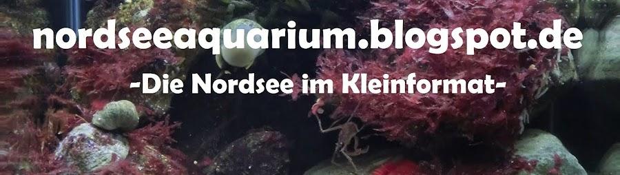 Nordseeaquarium
