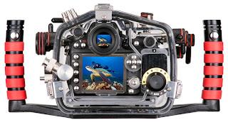 underwater Nikon D800/D800E