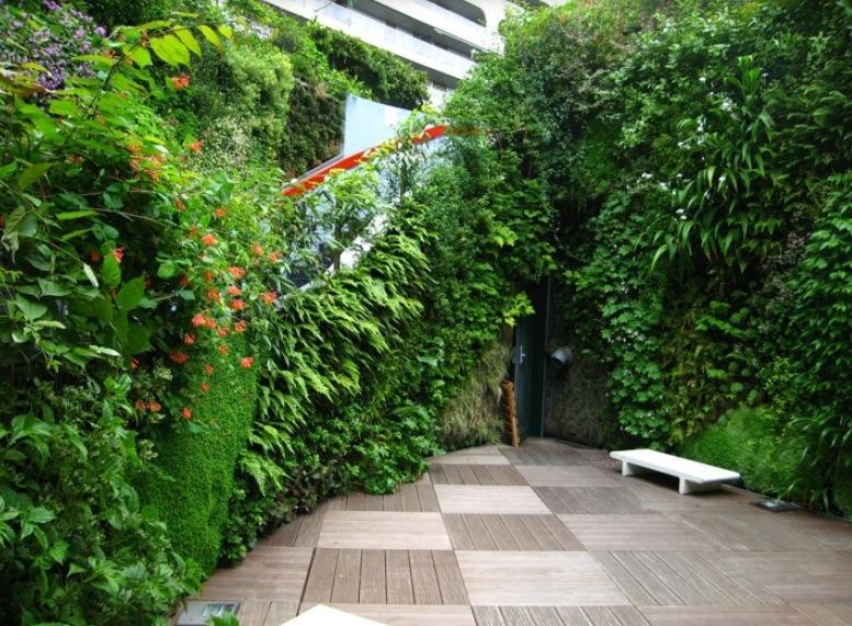 Jardines verticales monterrey mas fotos de interiores for Fotos de jardines verticales