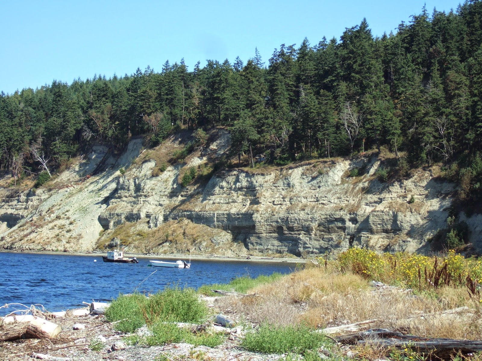 Reading The Washington Landscape Silts And Slope Failures At Discovery Bay