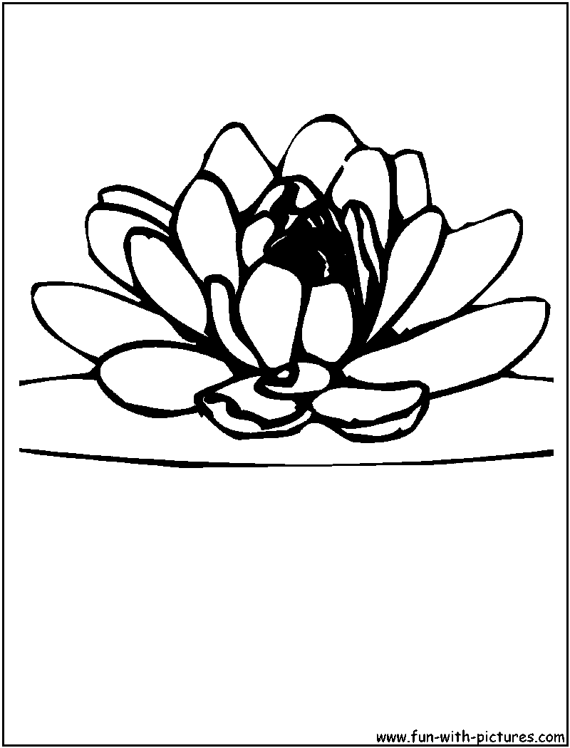 lotus flower coloring pages - photo#18