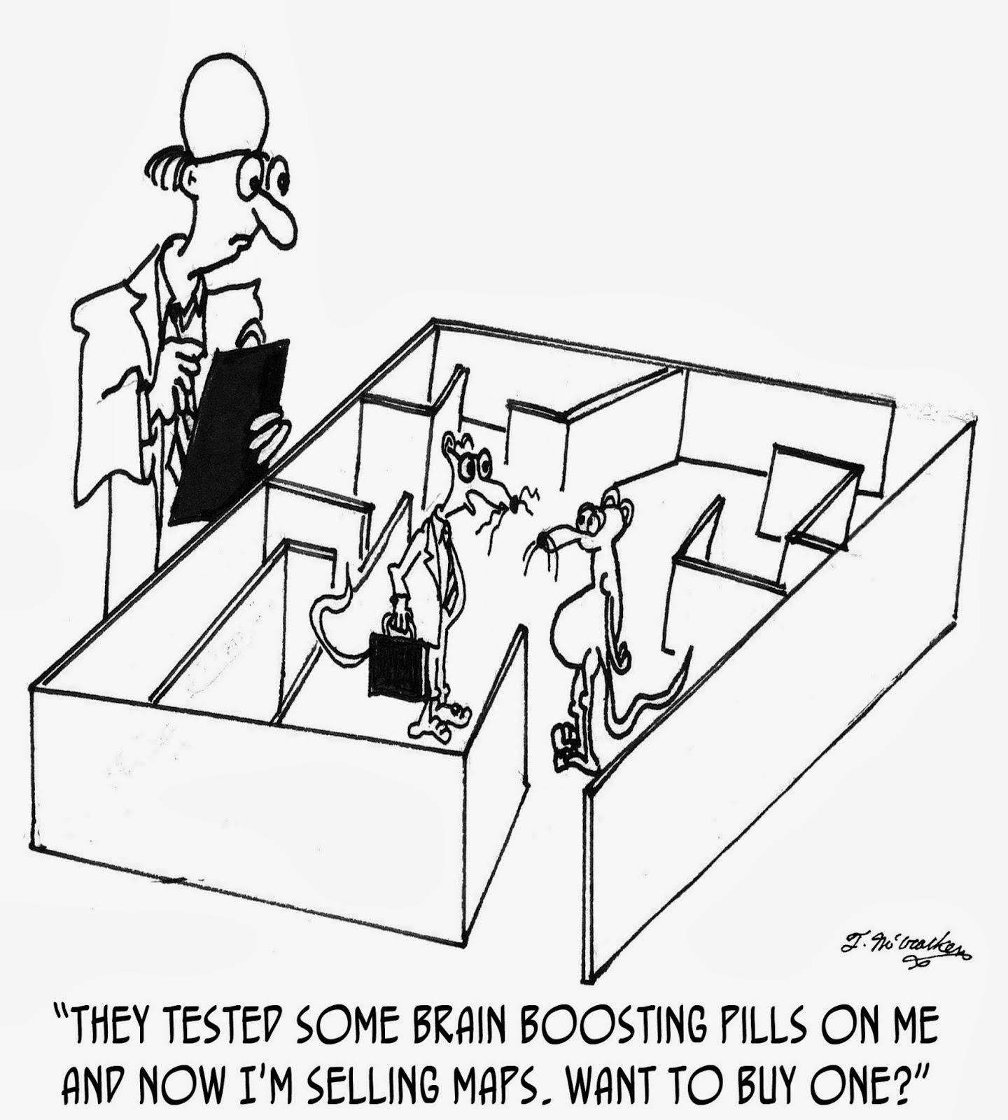 foundations of behavioral neuroscience pdf free
