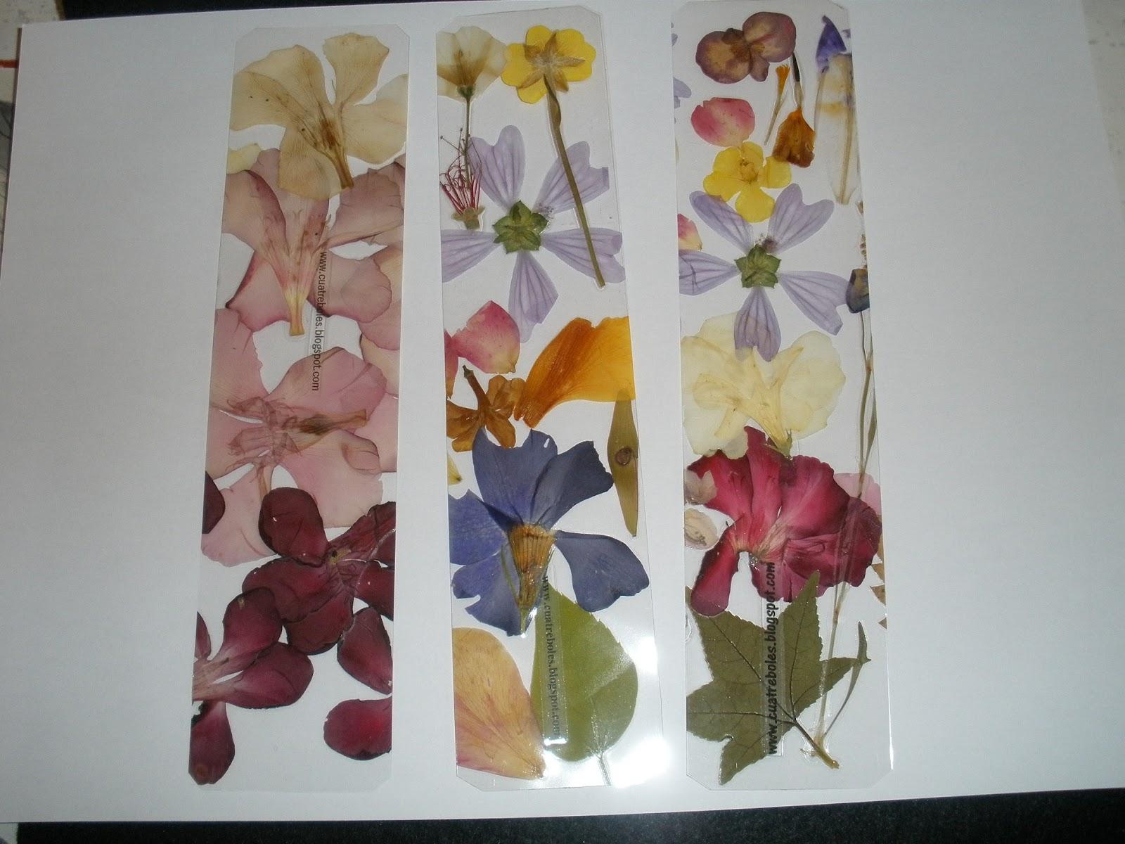 Increíble Cómo Enmarcar Flores Secas Componente - Ideas ...