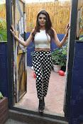 Hindi Actress Sherlyn Chopra photos-thumbnail-7