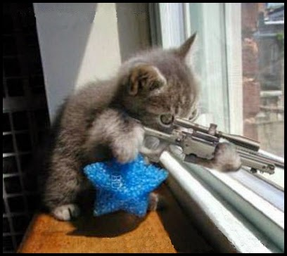 Gatito Francotirador