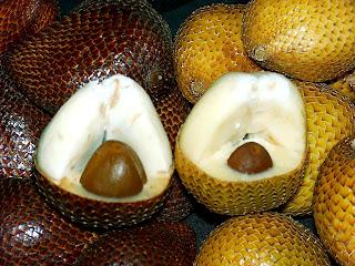 manfaat buah salak, buah salak, salak, salak pondoh
