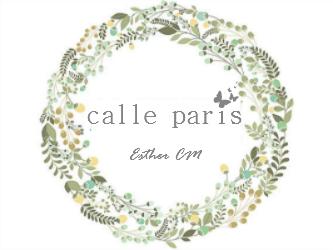 Calle París