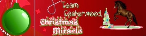 Team Canterwood: Christmas Miracle