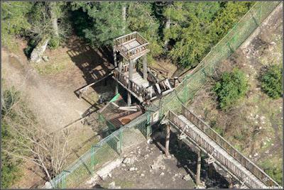Vista desde arriba de la valla que separa la zona osera del Parque