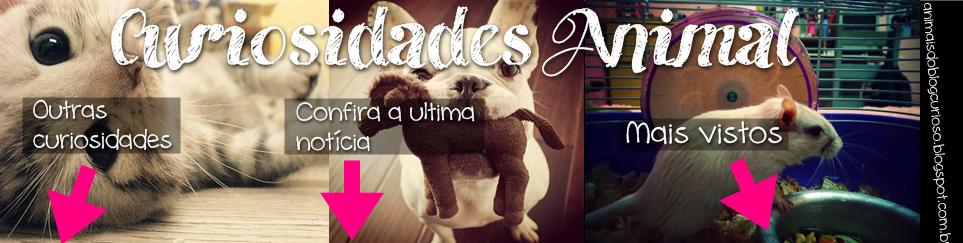 .::Curiosidades Animal::.
