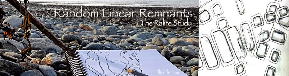 Random Linear Remnants - The Ralire Study