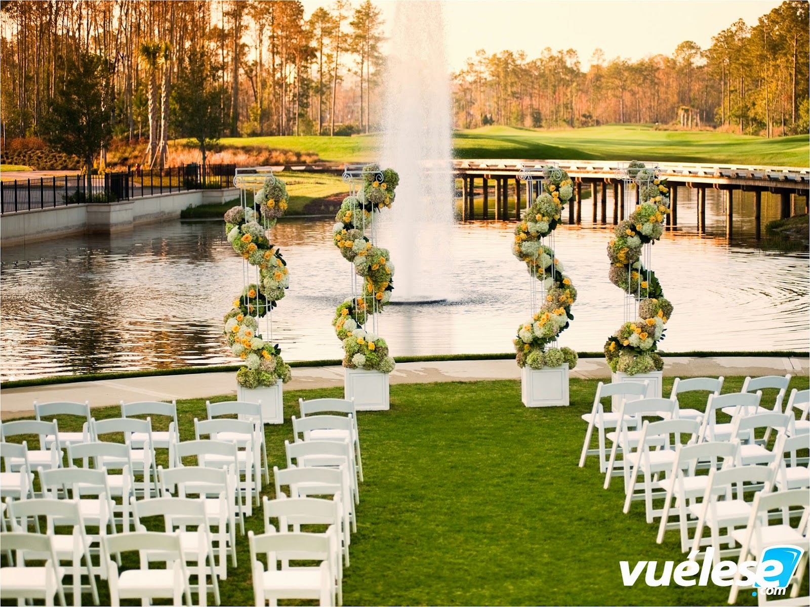 Paquetes de Bodas de Disney World