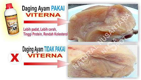 perbedaan-daging-ayam-yang-tidak-memakai-produk-organik-nasa-viterna-dengan-yang-tidak-pakai