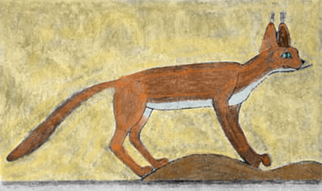 Egyptian Wild Cat