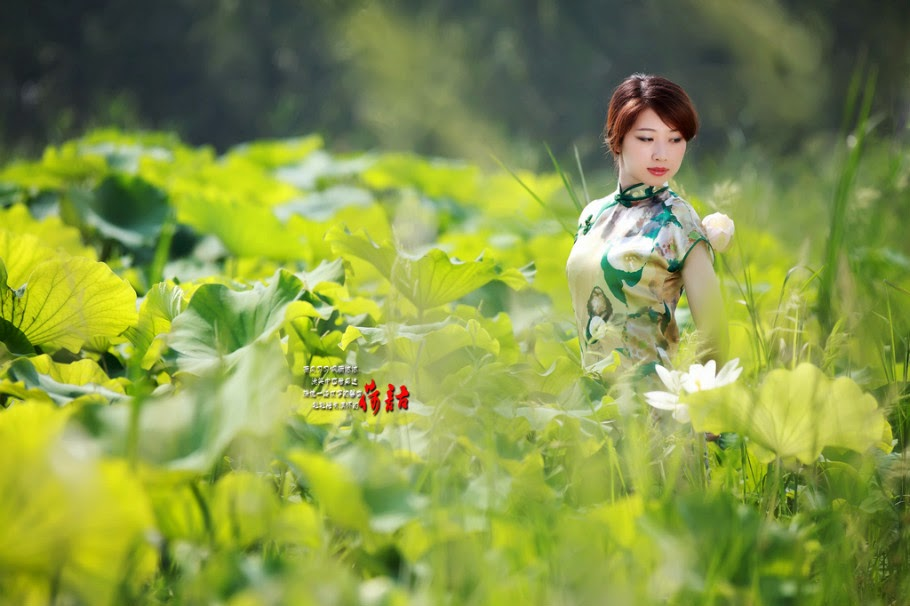 荷塘春色 (Hé táng chūn sè) - Spring by Lotus pond