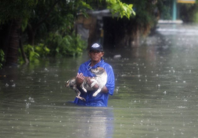 A man carries his pet in flooded streets in Metro Manila